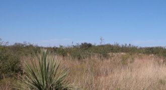 .25 Acre Arizona Parcel near the Coronado