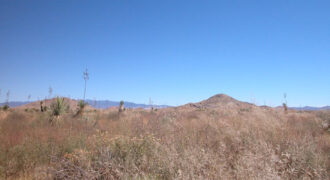 0.23 Acres +/- |2 Hours from Tucson